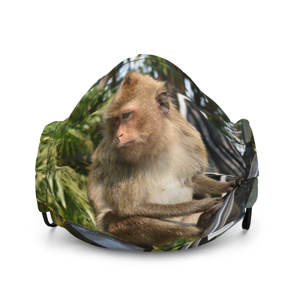 reusable face mask with monkey photo print